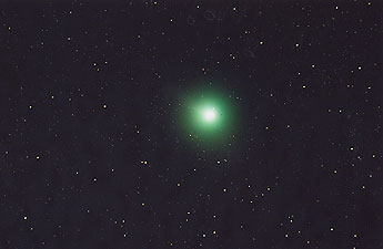 [60cm反射によるマックホルツ彗星の写真]